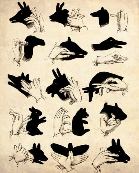 groundhog day activities with shadows