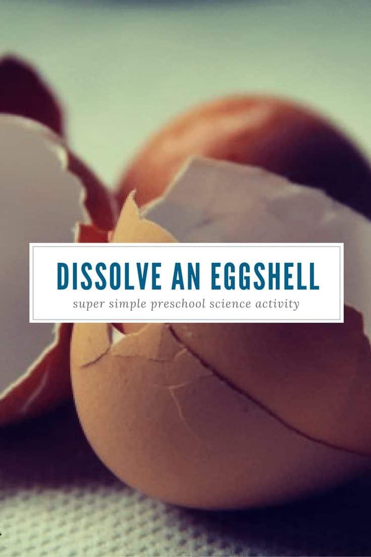 dissolve an eggshell