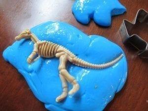GAK Fossils 2