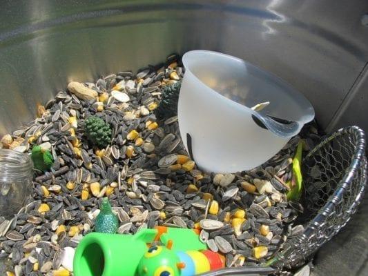 Bird Seed Spring Sensory Tub