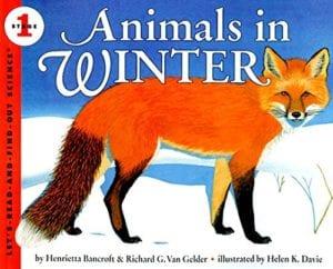 Animals in Winter Children's Book