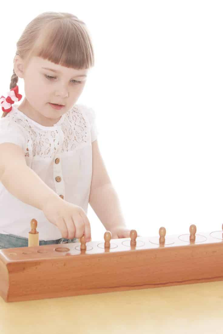 Montessori Knobbed Cylinders