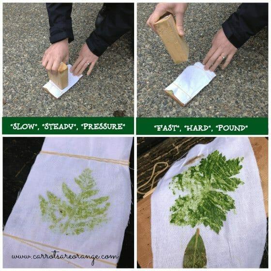 leafactivityapproach