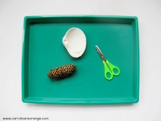 pine cone cutting