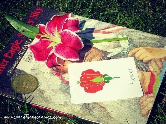 Preschool Activities with Flowers