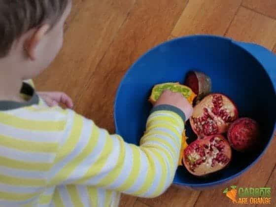 fruit_exploration_kids_activity