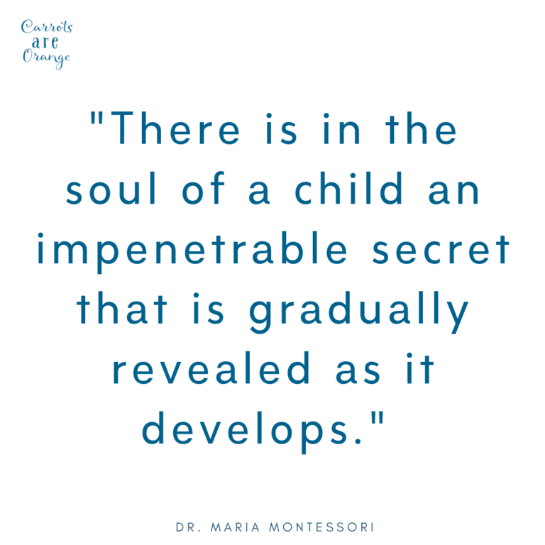 Montessori Quote about Babies