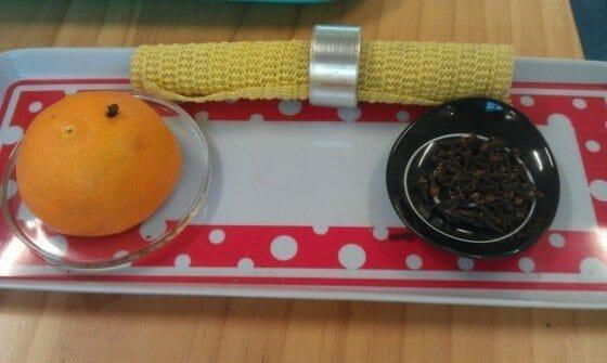 orange and cloves montessori work