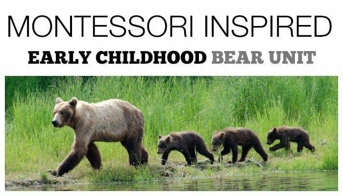 Bear Activities for Preschoolers