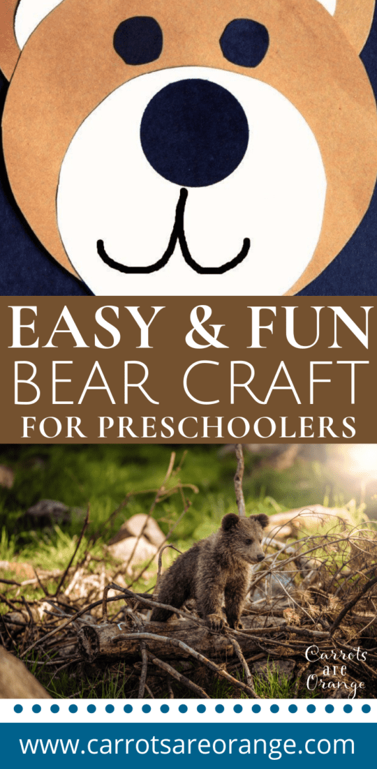 Simple Bear Craft for a Winter or Hibernation Unit