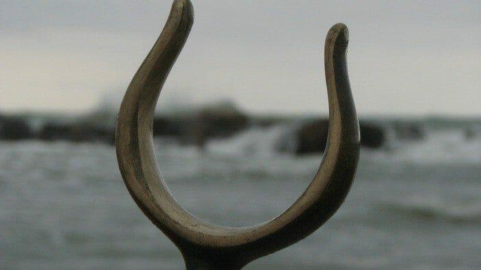 wishbone feature
