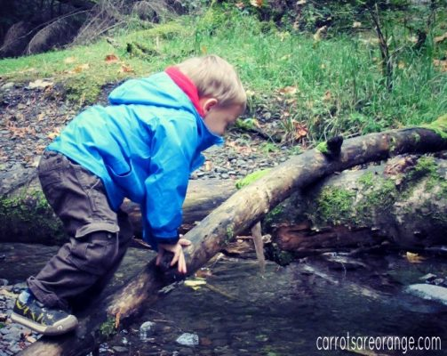 Outdoor Classroom Ideas: Learn 75+ Activities for Your Learning Environment