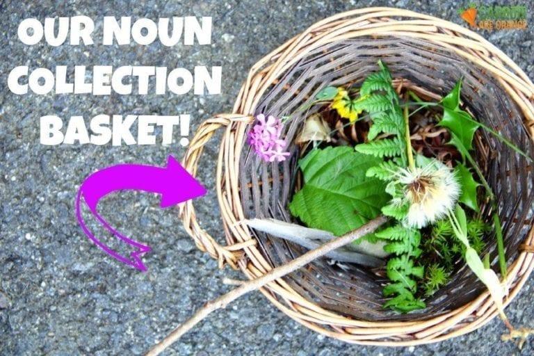 Montessori Noun Activity