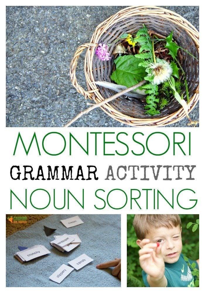 Montessori Grammar Activity