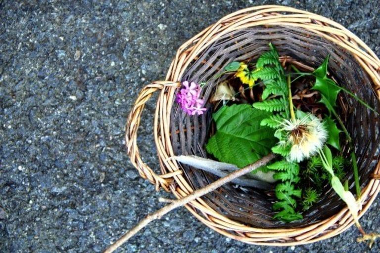 Montessori Language Outdoor Activities