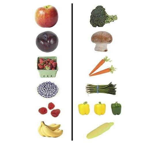 Sprout Food Baby Food Fruit Vegetable Sort