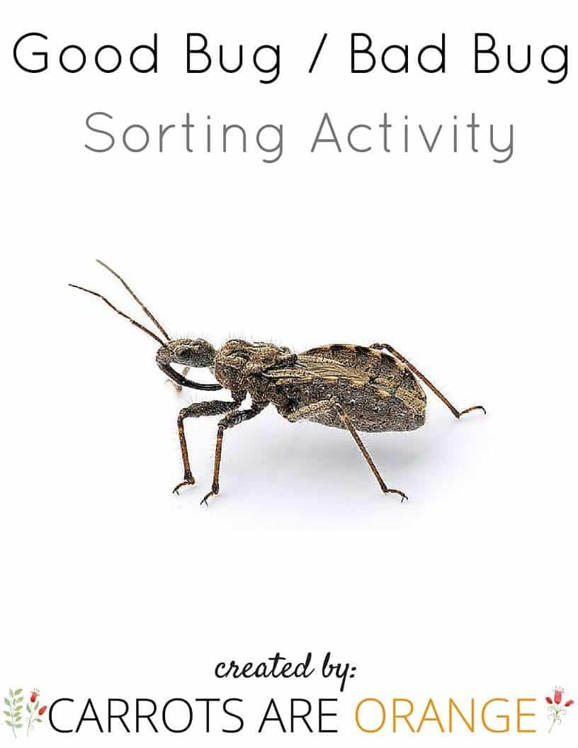 Good Bug Bad Bug Sort