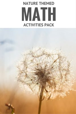 nature themed math activities