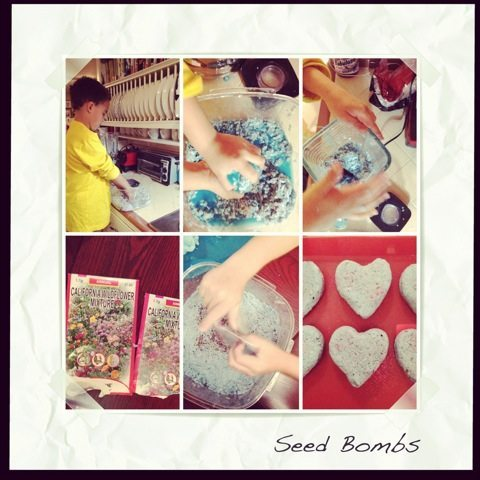 DIY Mother's Day Gifts from Kids by Kids - Seed Bombs