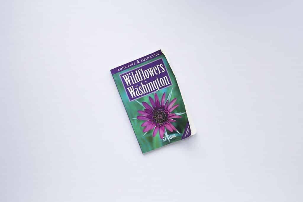 Spring Shelves Wildflowers