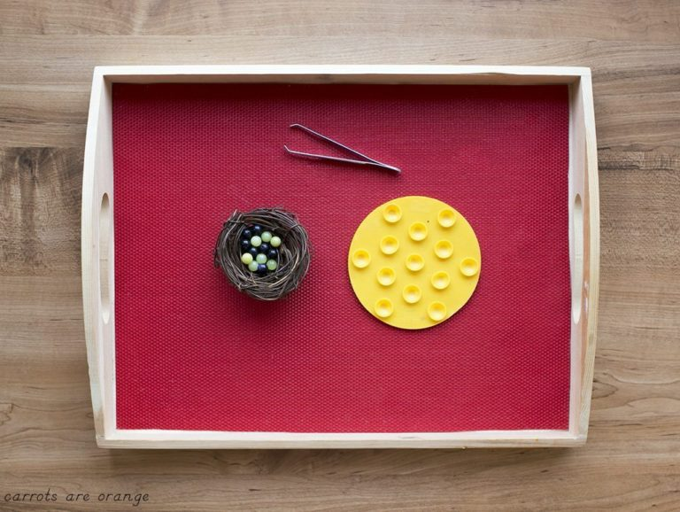 Montessori Shelf Ideas Eggs in the Nest