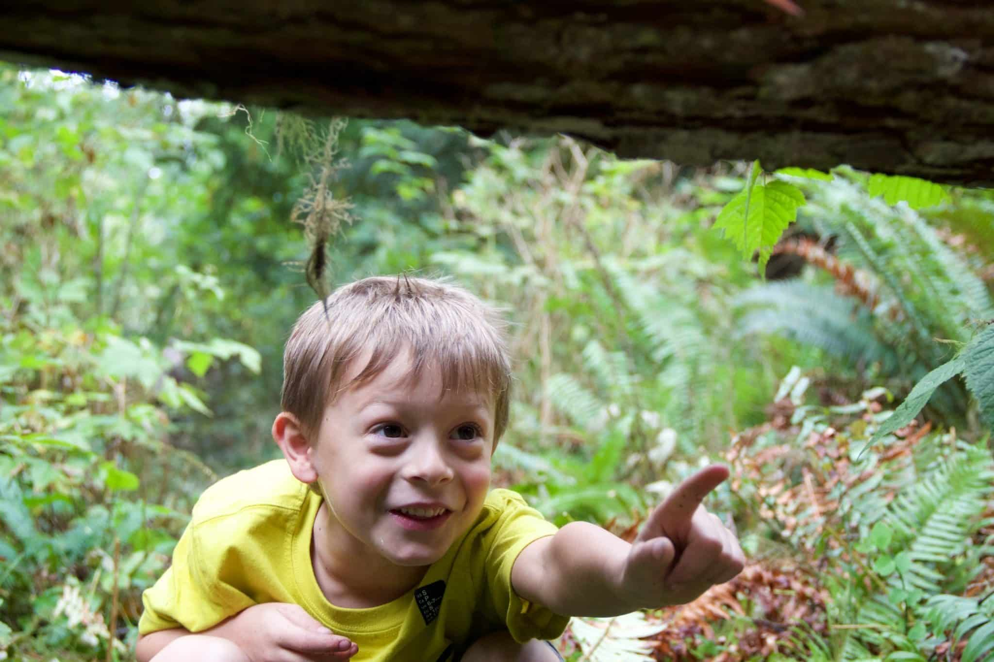 children in nature discovery