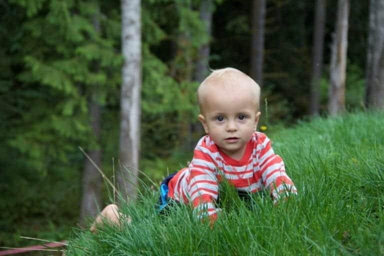 children in nature grass
