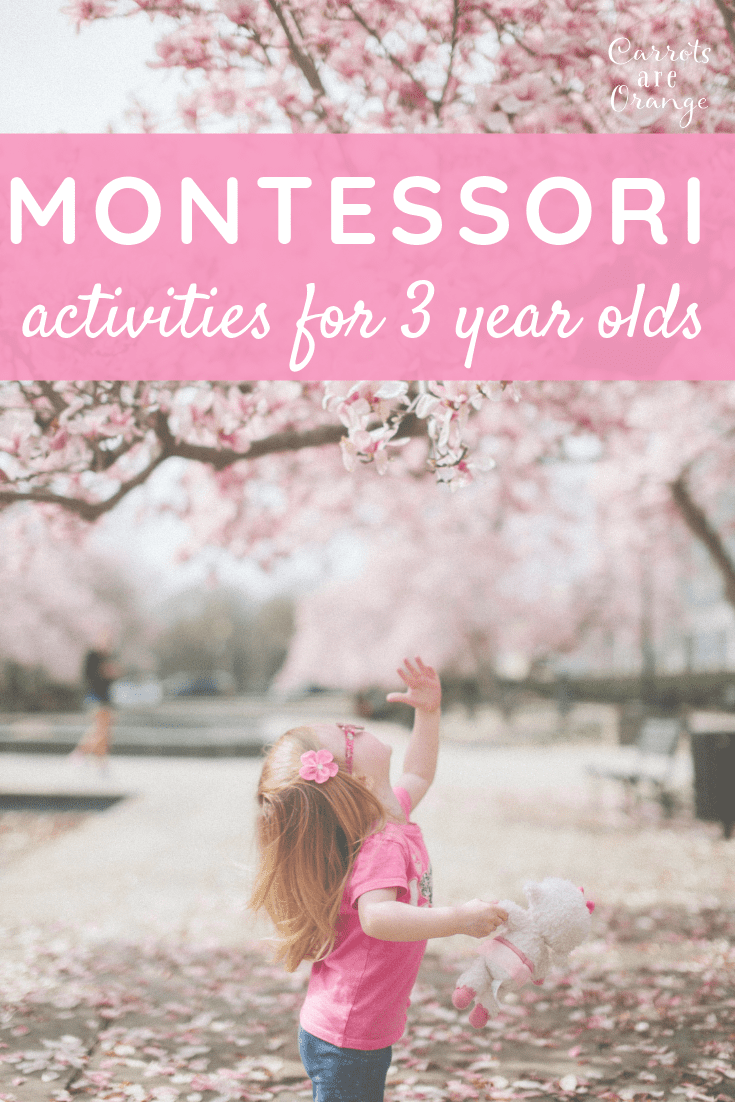 Montessori Activities for 3 year olds