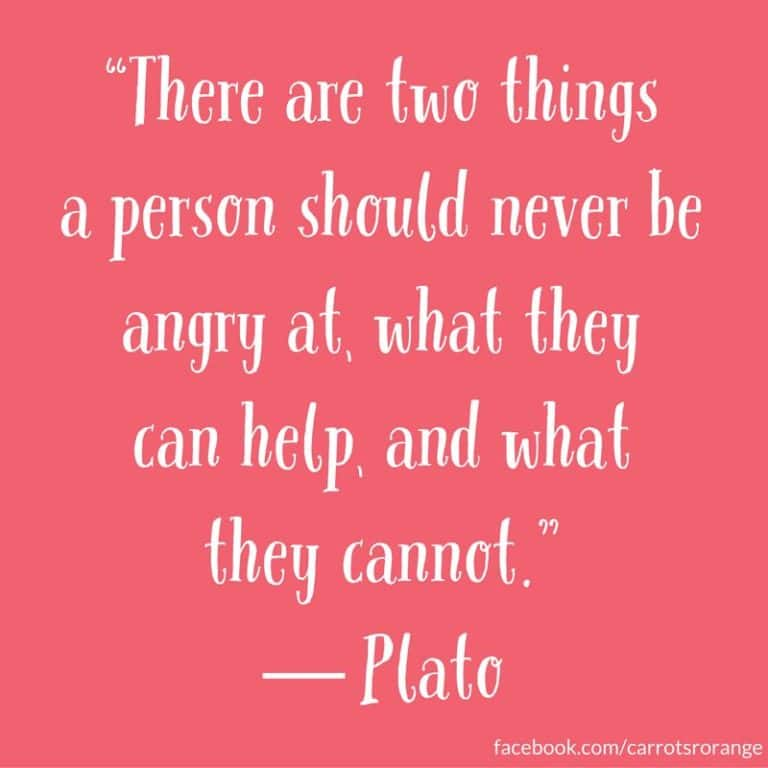"""""""There are two things a person should never be angry at, what they can help, and what they cannot.""""  ― Plato"""