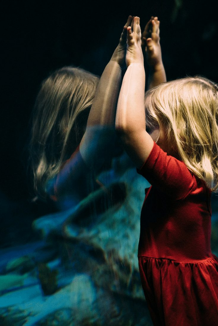 How to Help Your Childs Challenging Behavior