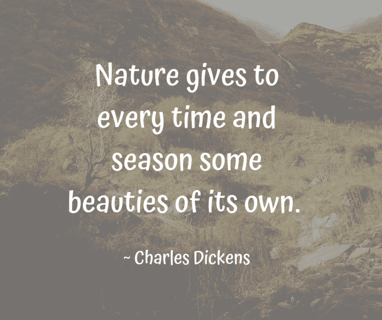 Nature Quote by Charles Dickens