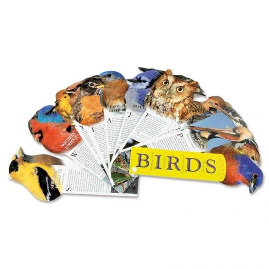 Bird Fandex