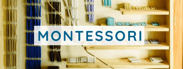 Montessori Categories Cover