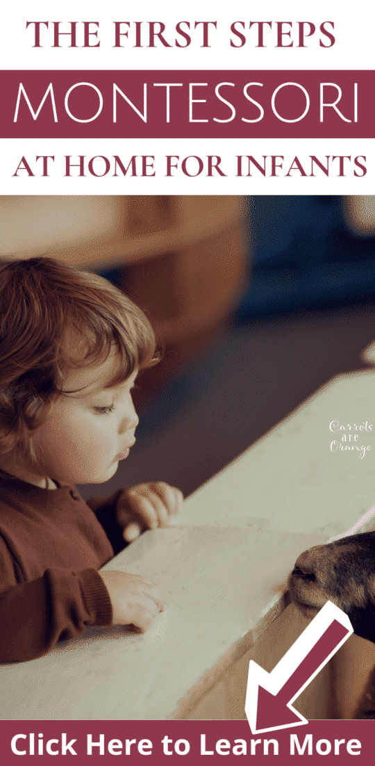 The First Steps to Montessori at Home with Infants