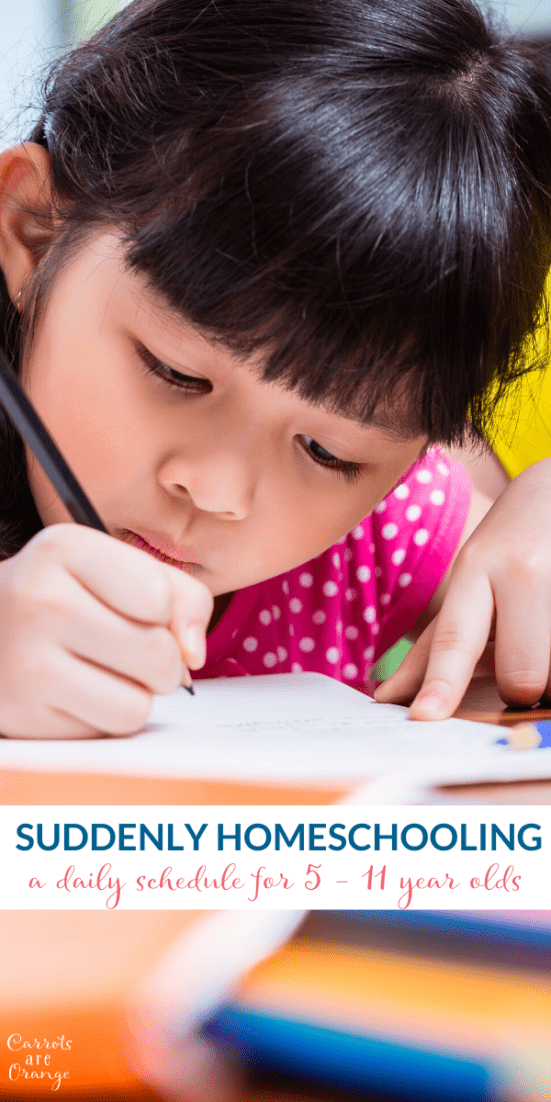 daily schedule for homeschooling